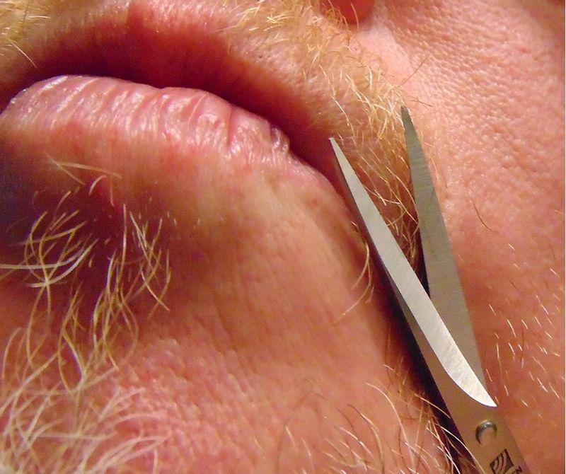 Seki-Edge-Moustache-Scissors-701167